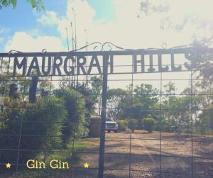 GinGin Maurgrah