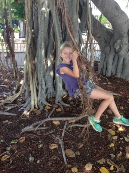 MagIsland Natural swing