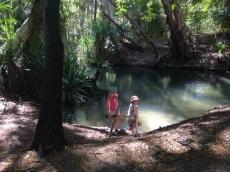 Creek at Adel's Grove